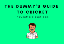 The Dummy's Guide to Cricket